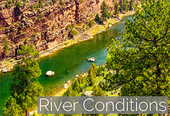Green river guided flyfishing trips wrf guides for Green river utah fishing report