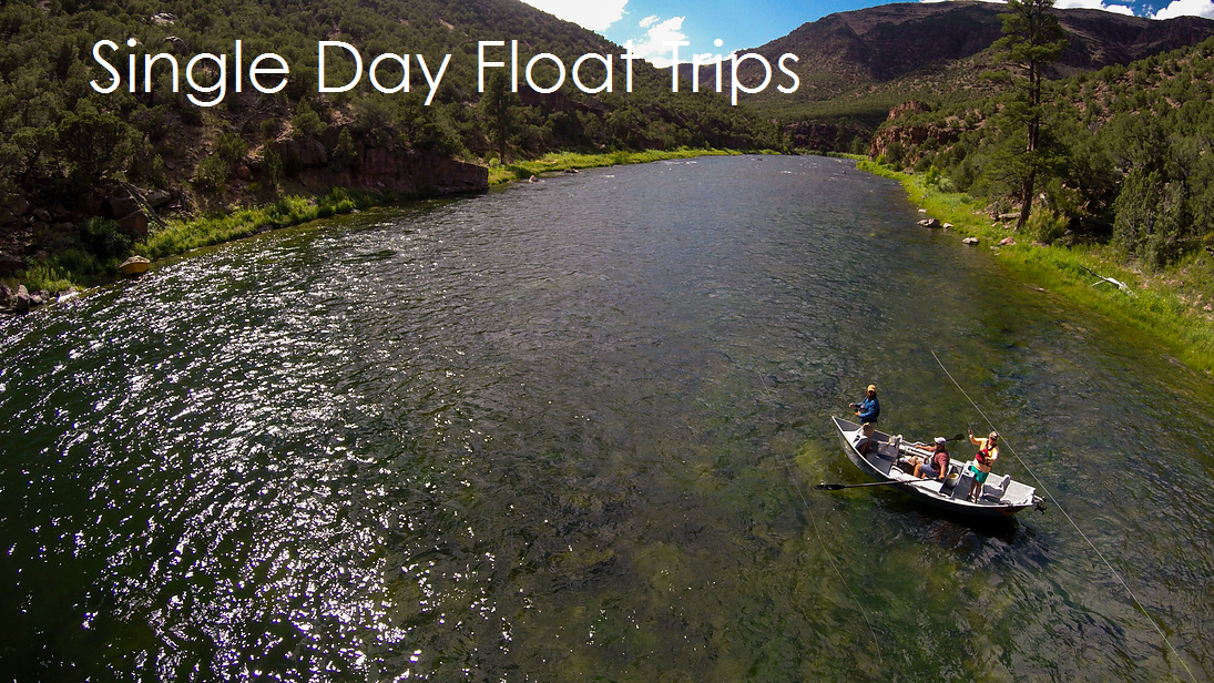 Green River Single Day Guided Flyfishing Trips